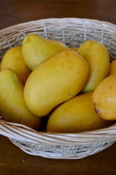 Ataulfo mangos