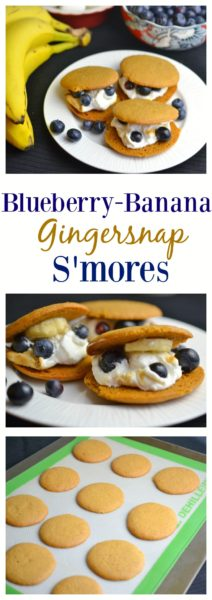 Blueberry Banana Gingersnap S'mores - The perfect movie food for watching Zootopia. #StreamTeam