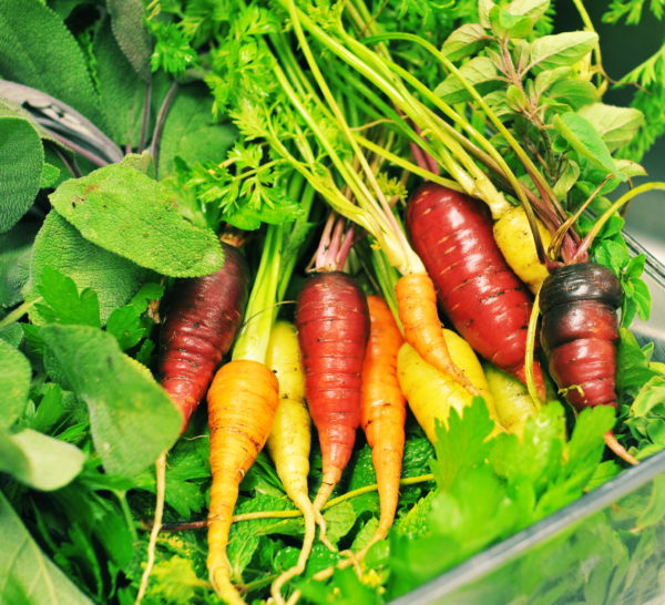 Carrots, via Home Grown Edible Landscapes
