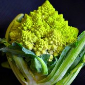 head of romanesco