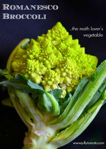 Romanesco broccoli - the math lover's vegetable.