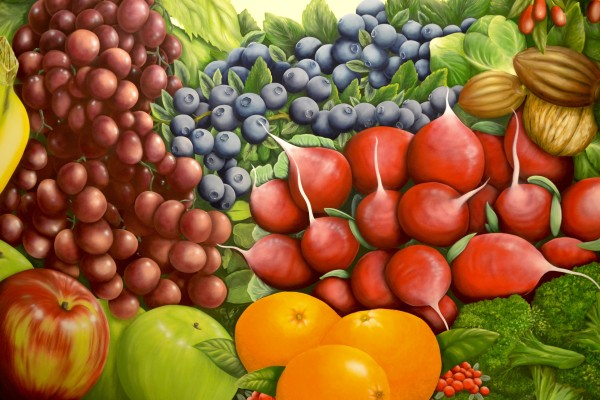 The fruit and vegetable mural in the atrium of the David H. Murdock Core Laboratory