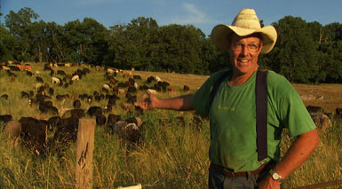 Joel Salatin of Polyface Farms and his grass-fed herd, from Food Inc.