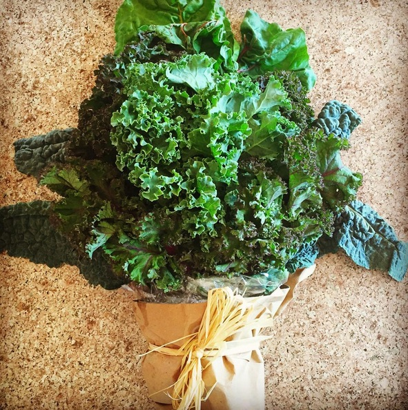 A bouquet of kale for National Kale Day