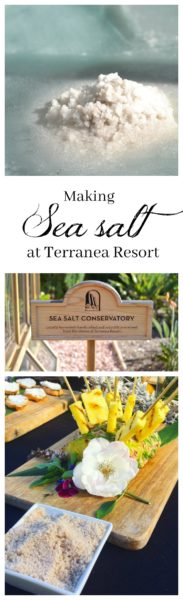 Making sea salt at Terranea Resort