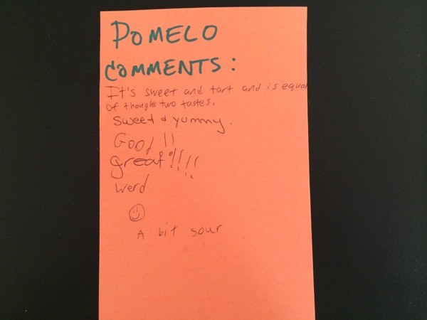 pomelo comments